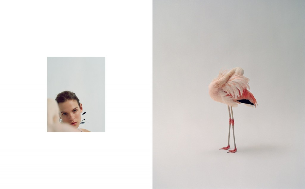 Dario-Catellani-Photography-on-Previiew-7