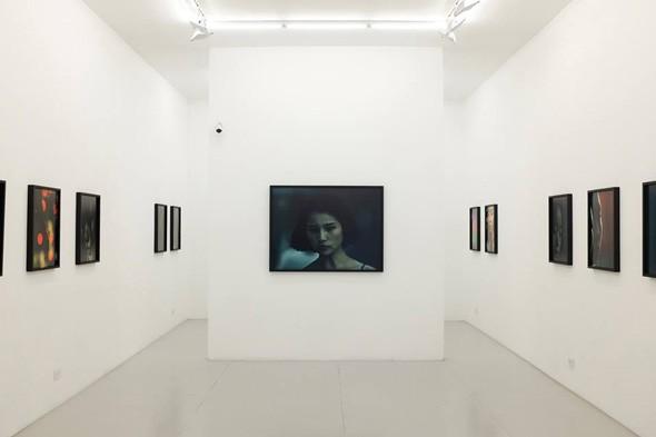 danziger-gallery-new-york